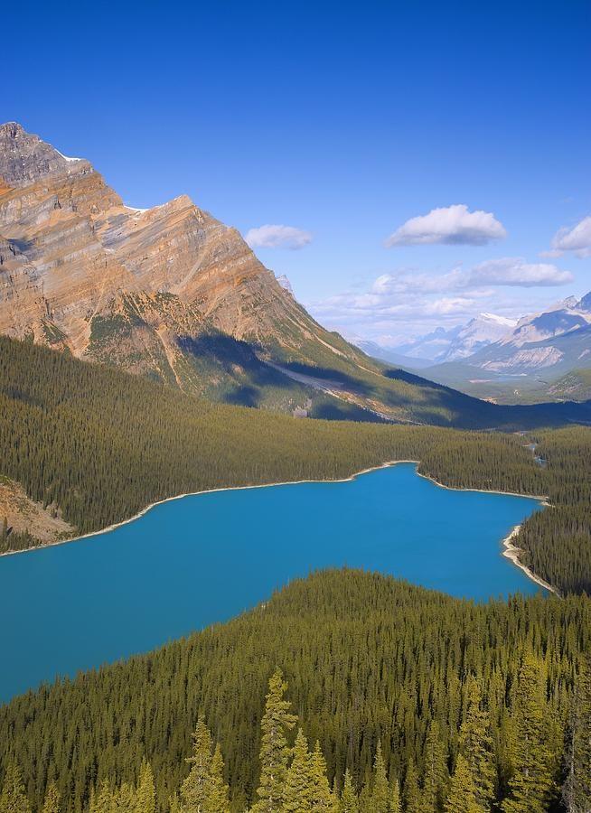 ✮ Peyto Lake - Banff National Park, Alberta, Canada