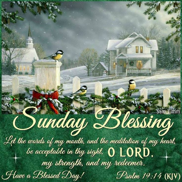Good Morning, Happy Sunday. I Pray That You Have A Safe And Blessed Day
