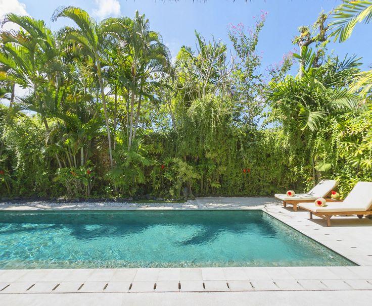 Last chance for our Pre-Christmas Special - 33% off until December 25.  https://www.villakubu.com/seminyak-villas/villa-rates/  #traveldiscount #villakubu #seminyak #bali #sanctuary #wanderlust #tropicalparadise #islandlife