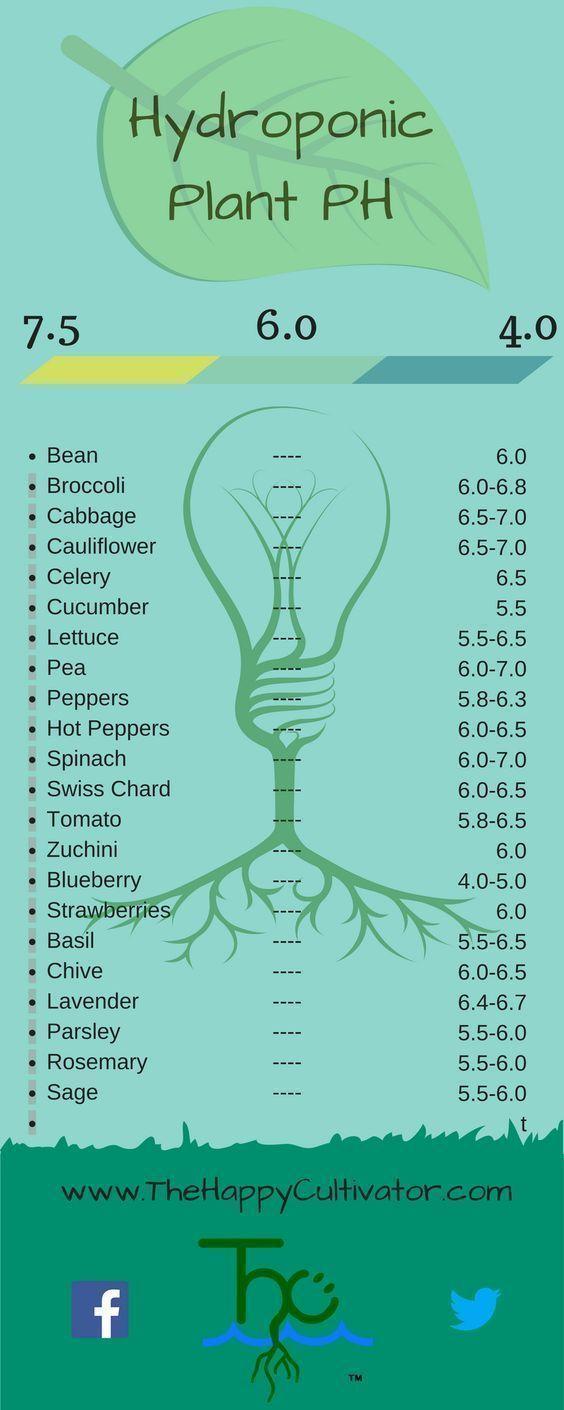 Specific plant PH infographic #hydroponicsinfographic #hydroponicsindoor