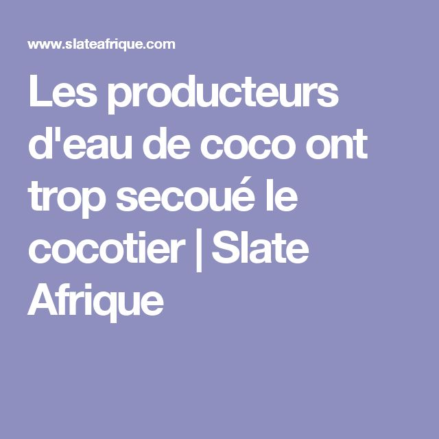Les producteurs d'eau de coco ont trop secoué le cocotier    Slate Afrique