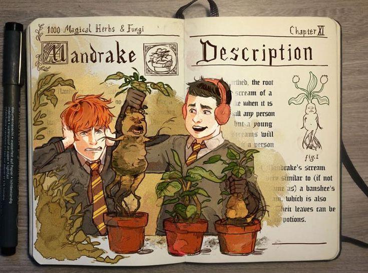 Illustrazioni incantesimi Harry Potter 03