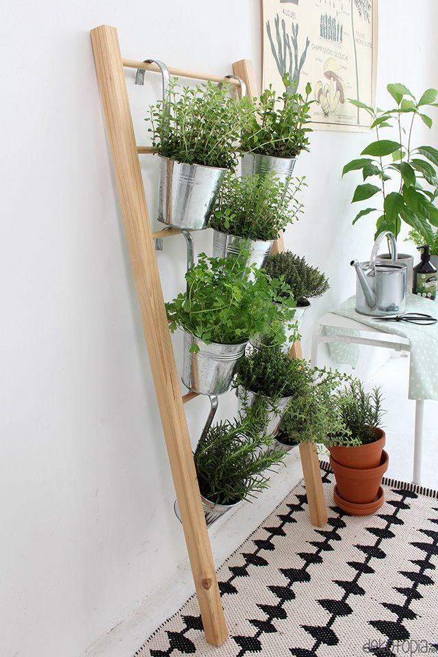 Build herbal ladder for yourself inside