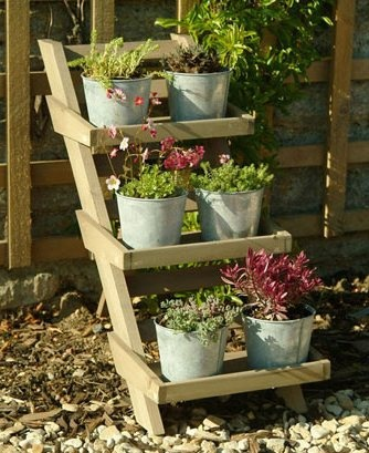 CASA COISAS & TAL: Tudo vira vaso: expondo suas plantas