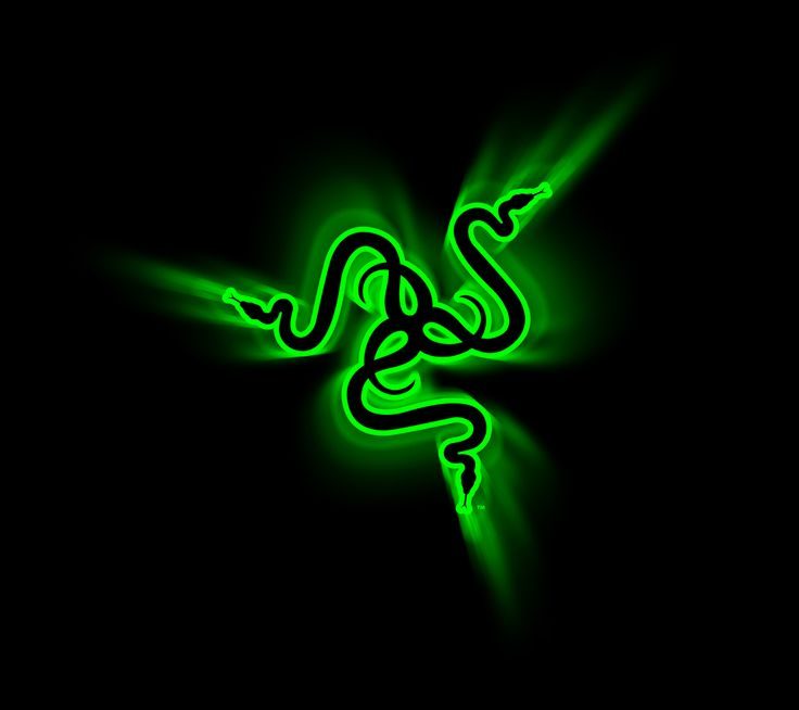 Image result for razer computer logo