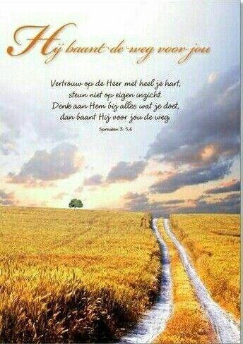 spreuken 3:5,6