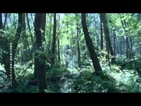 【CM】小野ゆり子 綾野剛 サントリー ウイスキー 白州「恋を森で」篇