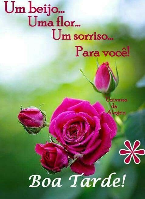 Positive Vibes Quotes Wallpaper Pin By Lucilene G On Boa Tarde Pinterest