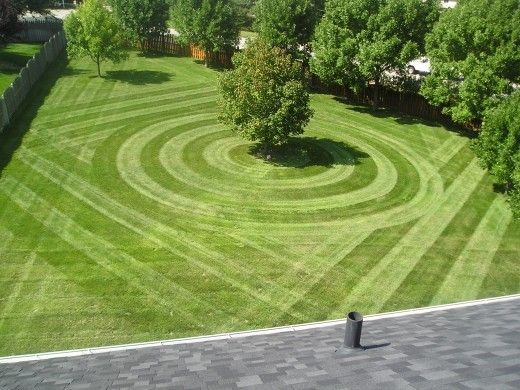 29 best Lawns and mowers images on Pinterest | Backyard ideas ...