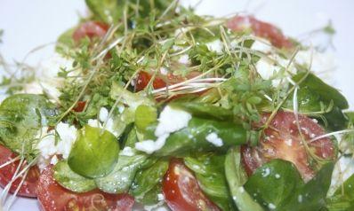 Mozzarella Paradeiser Salat mit frischer Kresse