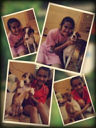 Me, my sister, and my two beloved dogs, okan and sheryll. Love them so much (taken at rumah tiga ambon)