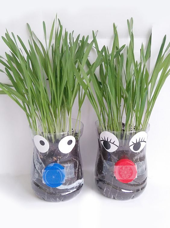 Faites pousser du gazon c'est super facile. Et vous pouvez rendre cette activité jardinage pour enfants encore plus amusante en fabriquant des bonhommes : dites bonjour à Monsieur et Madame Gazon !