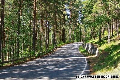 Punkaharju Esker Nature Reserve, Finland