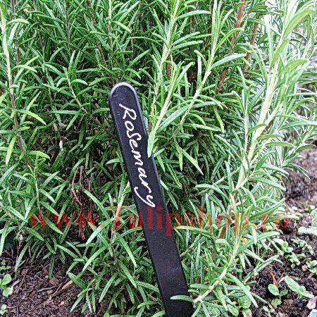 Eticheta plante din plastic negru 10 cm