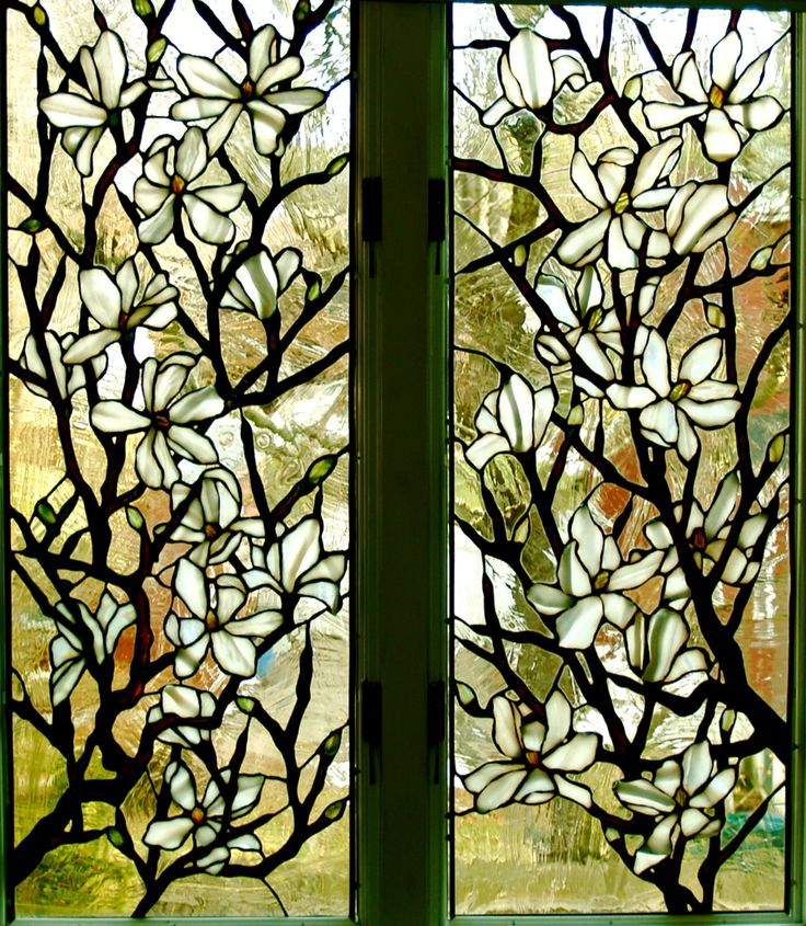 beautiful stained glass windows dogwood