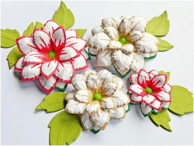 Komplet stempli Kwiaty nr3 Craft Passion