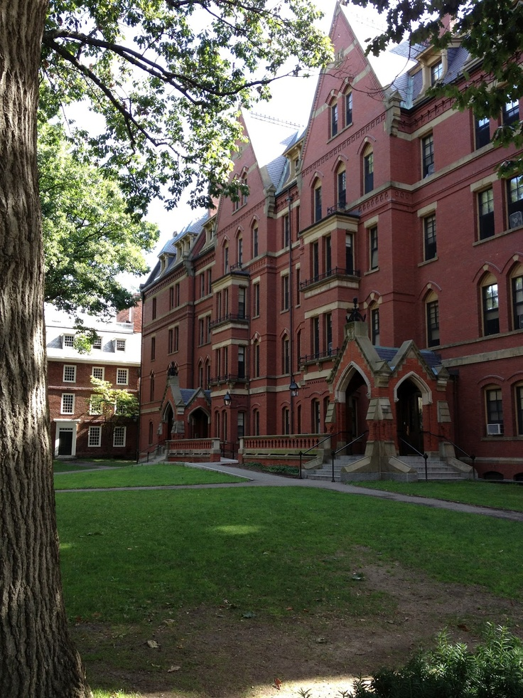 harvard creative writing fellowship Learn more about the olive b o'connor fellowship in creative writing which hosts writers completing their first books at colgate university.