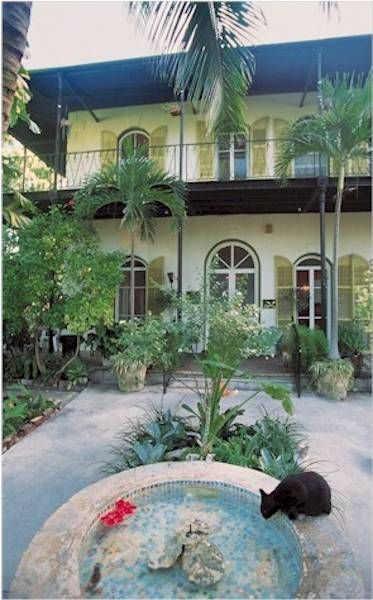 Hemingway house with all the polydactyl kitties!