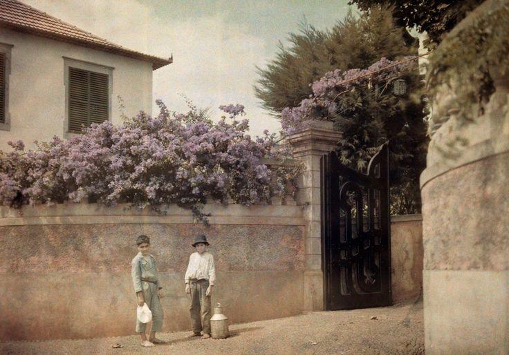 Madeira Photo   As fotos de Wilhelm Tobien de 1934