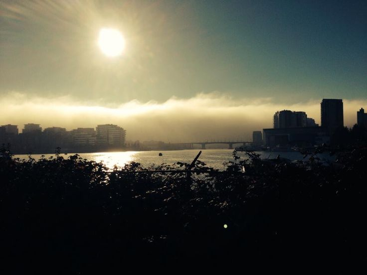 One foggy afternoon looking towards Cambie bridge