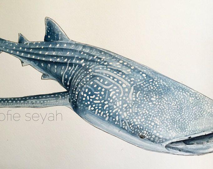 Las 25 mejores ideas sobre arte de tibur n en pinterest for Vivero para peces