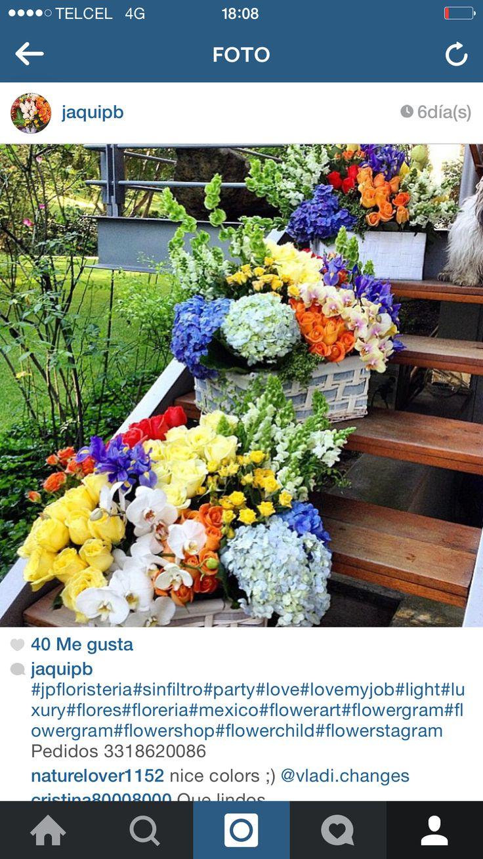 Flores flowers Party color decoration ideas