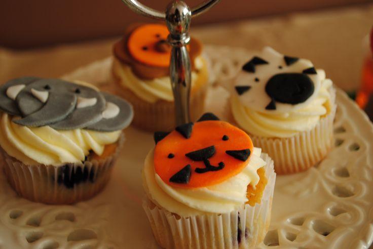 Mini cupcakes, animal cupcakes