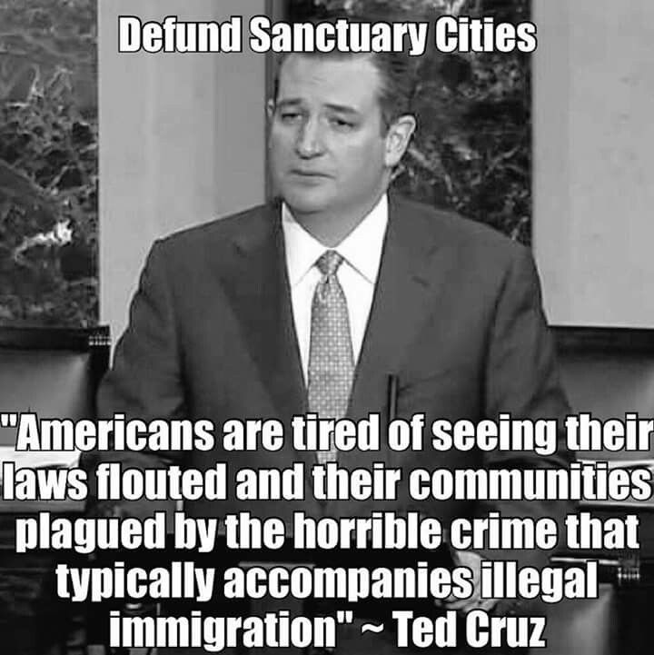 Image result for defund sanctuary cities