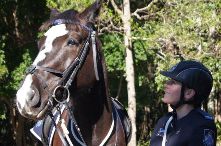 Watch the Mounted Police demonstrations at the Ekka