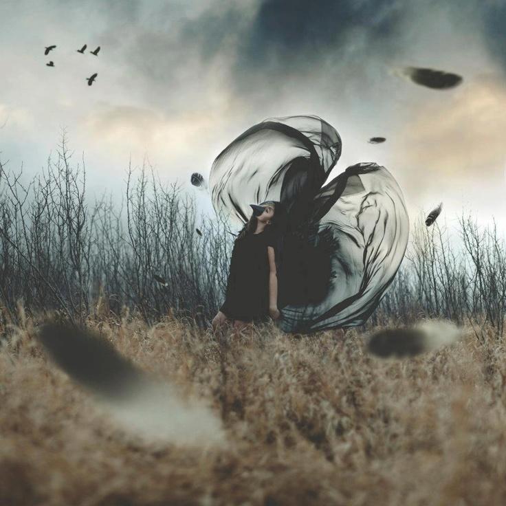 Tasha Maríe.: Concept Art Photography, Photos, Black Magic, The Crows, Tasha Mary, Creative Photography, Fashion Photography, Beautiful Photography, Birds