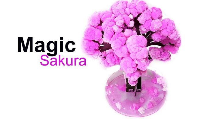 Peoria Magic Crystal Growing Sakura Paper Tree Cherry Tree Novelty Toys Children #Peoria