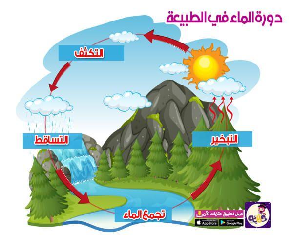 قصة عن دورة الماء في الطبيعة للاطفال In 2021 Kindergarten Math Worksheets Learn Arabic Language Learning Arabic