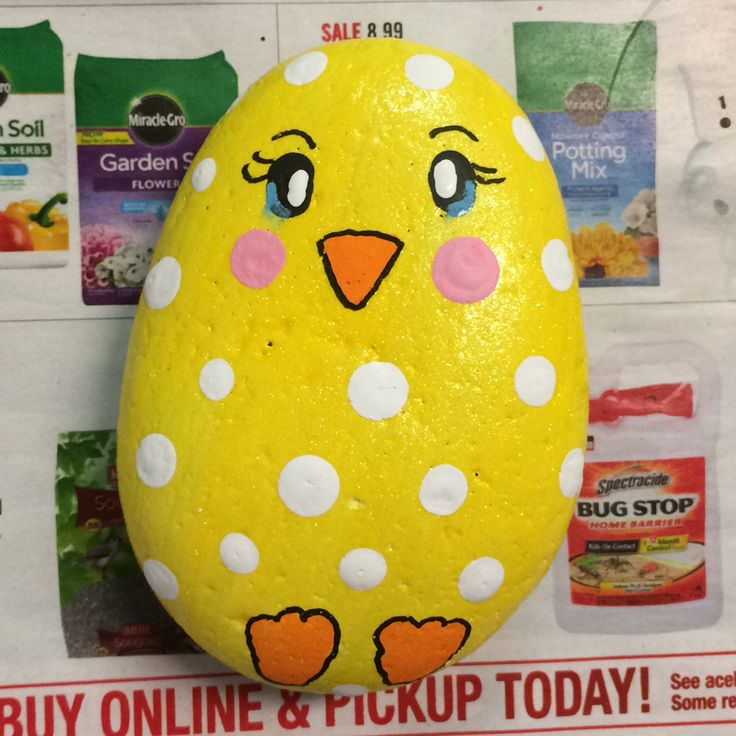 Baby chick cheerful yellow with white dots painted rock. I used yellow glitter paint today add sparkle