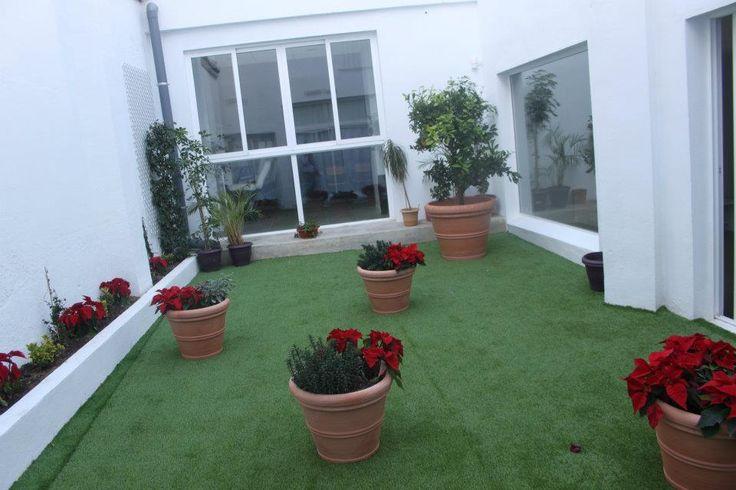 Jardin central en nuestras instalaciones de Juan Llorens, 37 Valencia, SPAIN