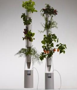 Η Μπρίτα Ράιλι ήθελε να καλλιεργεί τα δικά της λαχανικά μέσα στο διαμέρισμά της. Χρησιμοποιώντας την τεχνική της υδροπονίας -της μεθόδου καλλιέργειας των φυτών μέσα στο νερό- και τα μέσα κοινωνικής δικτύωσης, κατάφερε να δημιουργήσει μια δυναμική και αλληλέγγυα κοινότητα καλλιεργητών που σε όλον τον πλανήτη αριθμεί περισσότερα από 20.000 μέλη.