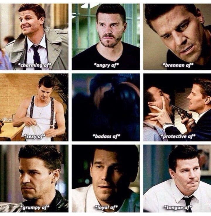 David Boreanaz as Seeley Booth
