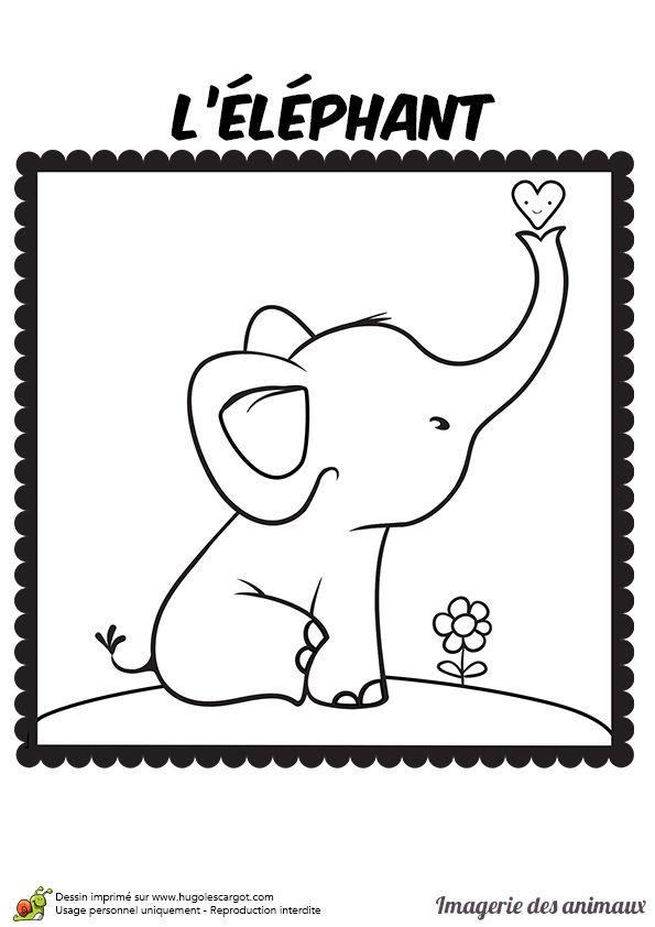 17 best images about clip and color on pinterest animaux coloring and ice cream coloring pages - Dessin elephant ...