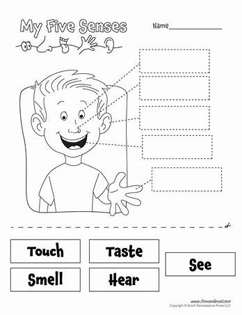 my 5 senses worksheets homeschool resources senses preschool 5 senses preschool five. Black Bedroom Furniture Sets. Home Design Ideas