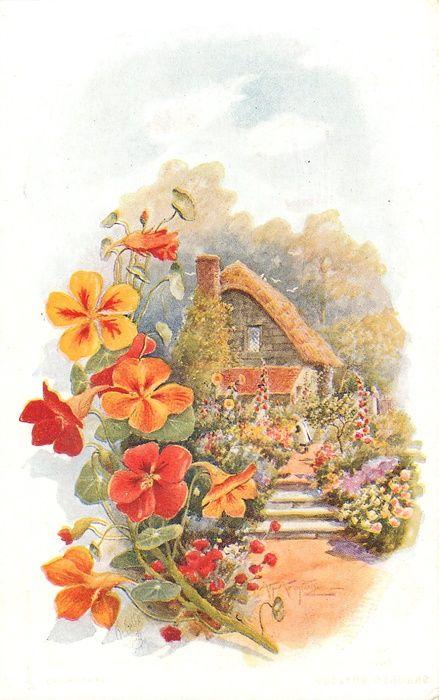 коттедж с девушка, стремящаяся цветов, четыре шага на пути, оранжевые / красные nasturtions границы осталось