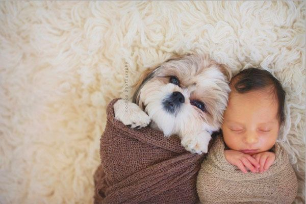 20 Super Adorable Photos of Baby and Dog Friendships!
