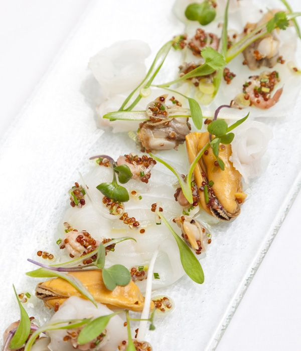 Dave Watts' halibut ceviche recipe is a real celebration of the sea, combining meaty Alaska halibut with mussels, clams, cockles and brown shrimp.