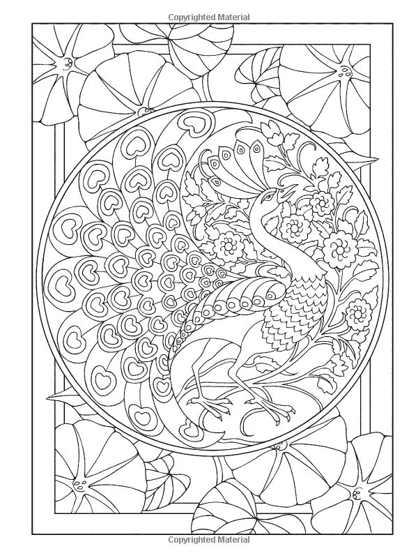 Creative Colouring Patterns Of Nature : Creative haven peacock designs coloring book