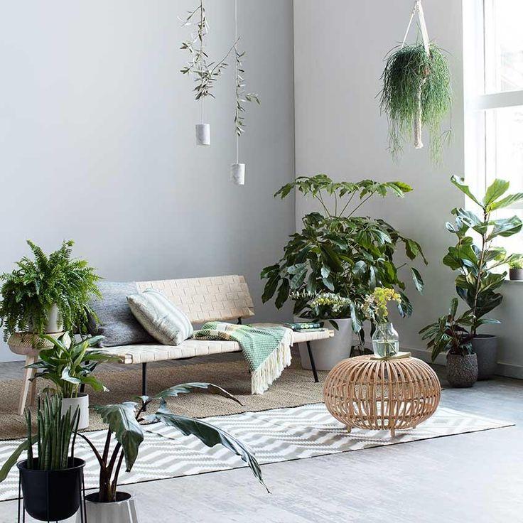 Die besten 25+ Indoor pflanzen dekor Ideen auf Pinterest