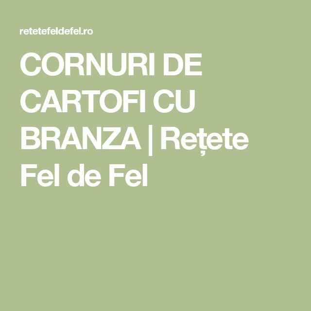 CORNURI DE CARTOFI CU BRANZA | Rețete Fel de Fel