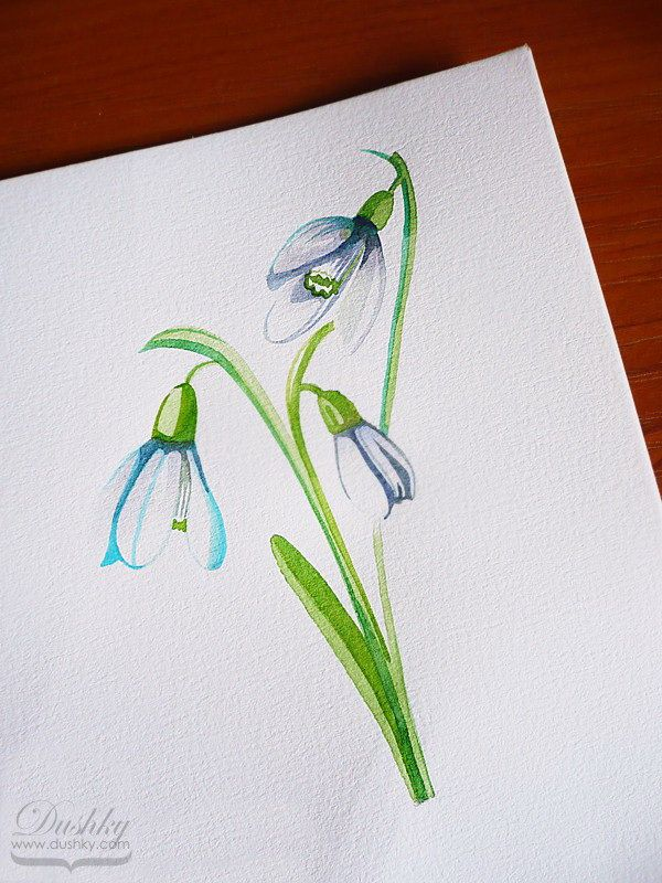 The Snowdrops By Dushky Watercolor Illustration Flower Plantproject Tattoodesign Snowdrops Nautical Tattoo Plant Projects Flower Tattoo Designs