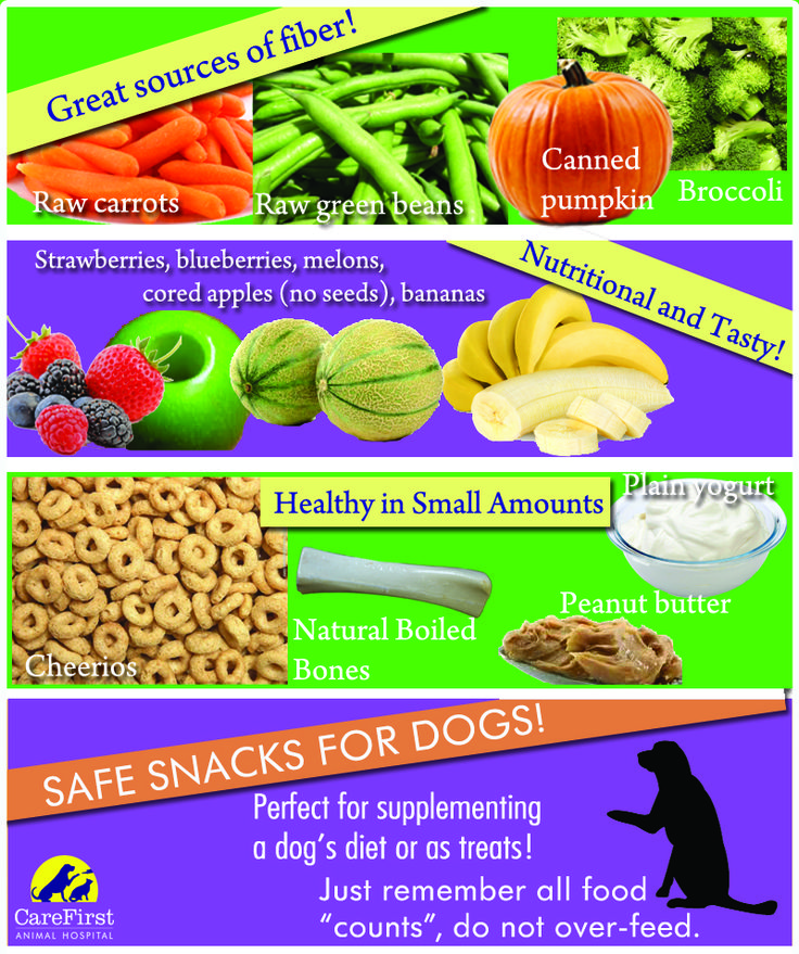 Making Your Own Dog Food Ratios
