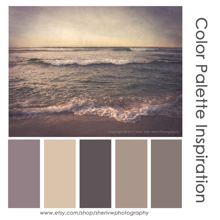 Color Schemes Taupe Orange Ivory: Best 25+ Taupe Color Palettes Ideas On Pinterest