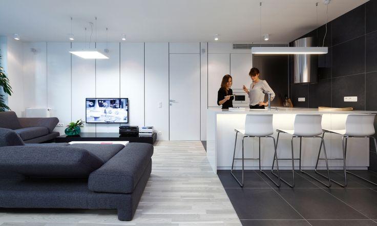 Jednotný dizajn nábytku ruší optické zábrany medzi funkciami bytu. Kuchynská zostava vizuálne prechádza do obývačky, z pohľadu obývačky stena za televízorom končí až pri nerezovej roletke v kuchyni. Biele dvere do spálne lícujú s bielym obkladom za televízorom aj s bielymi dvierkami vstavanej chladničky a kuchynských skriniek.