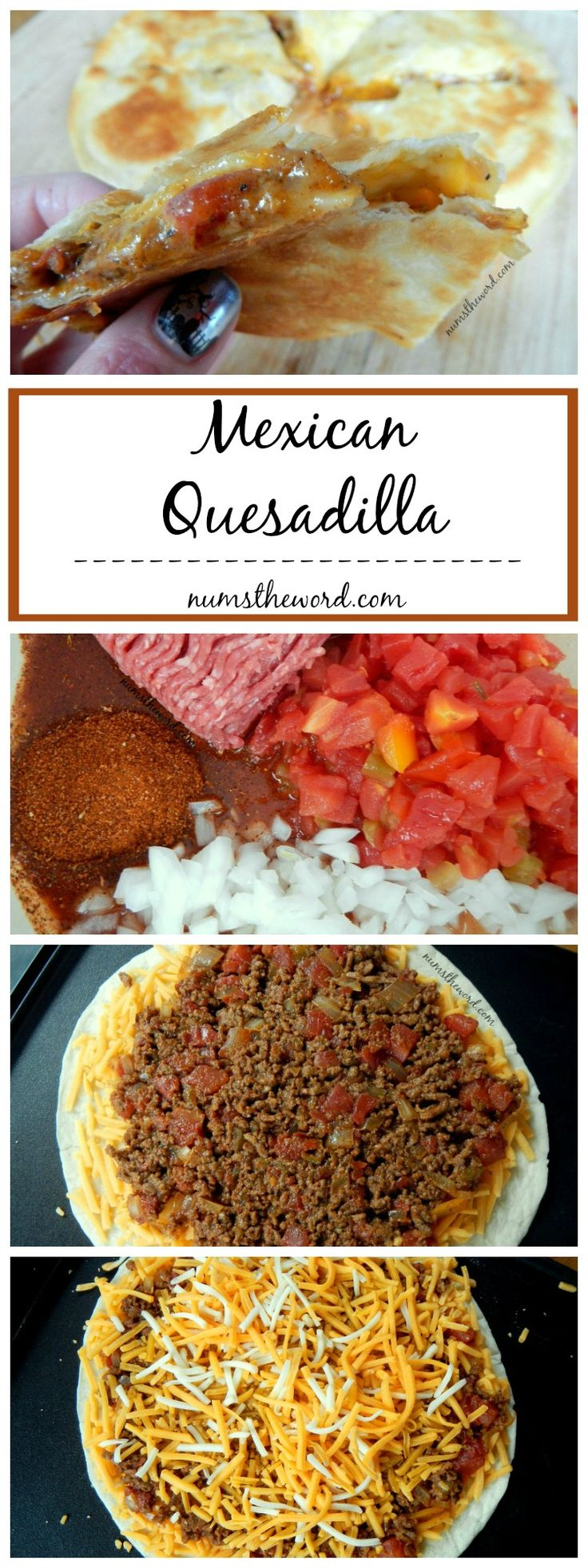 Mexican Quesadilla - A tasty twist on the classic quesadilla, this Mexican Quesadilla is hearty enough for a meal and great for on the go with kids! A quick meal for busy nights full of activities!