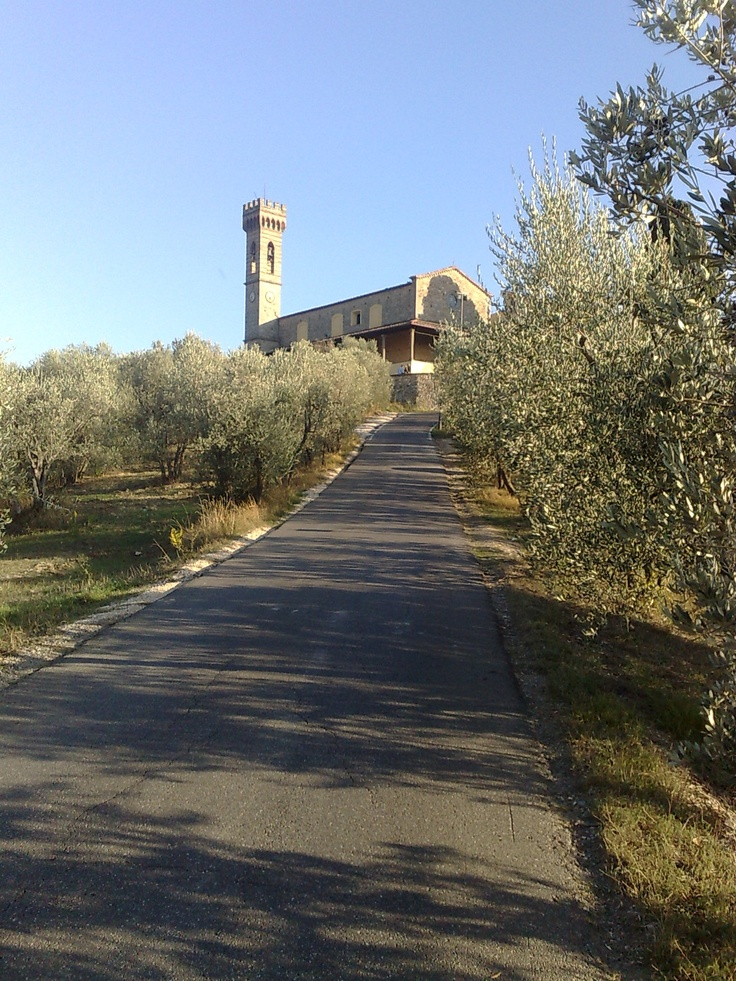 Chiesa San Martino alla Palma - Scandicci (Firenze)